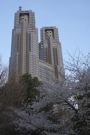080331_10_sakura