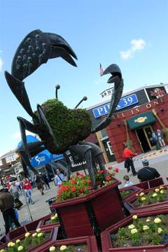 060523_fishermanswharf